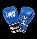 Boxing gloves - D-Logo Blue - Leather για δίαιτες