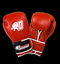 Boxing gloves - D-Logo Red - Leather για δίαιτες