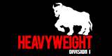 Heavyweight Division