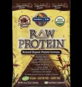 RAW Protein™ - Organic Powder Chocolate για δίαιτες