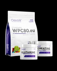 Whey Protein Concentrate / + Glutamine + Creatine FREE от OstroVit
