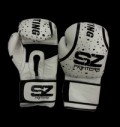 Boxing Gloves Evo Line PREDATOR - White για δίαιτες